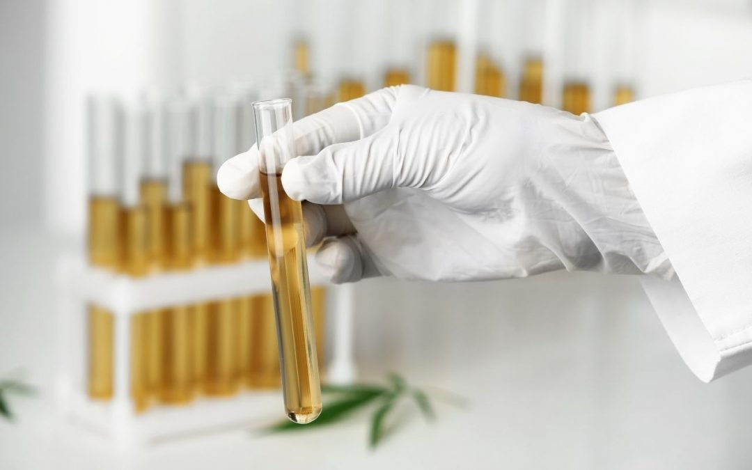 What is a Certificate of Analysis for CBD?