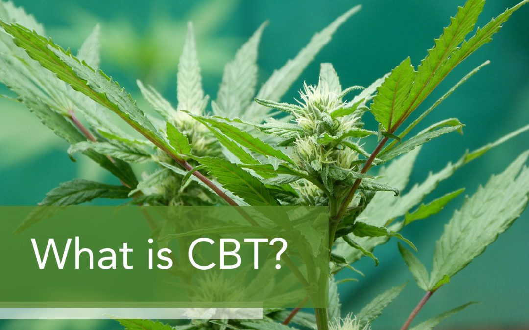 What is Cannabitriol (CBT)?