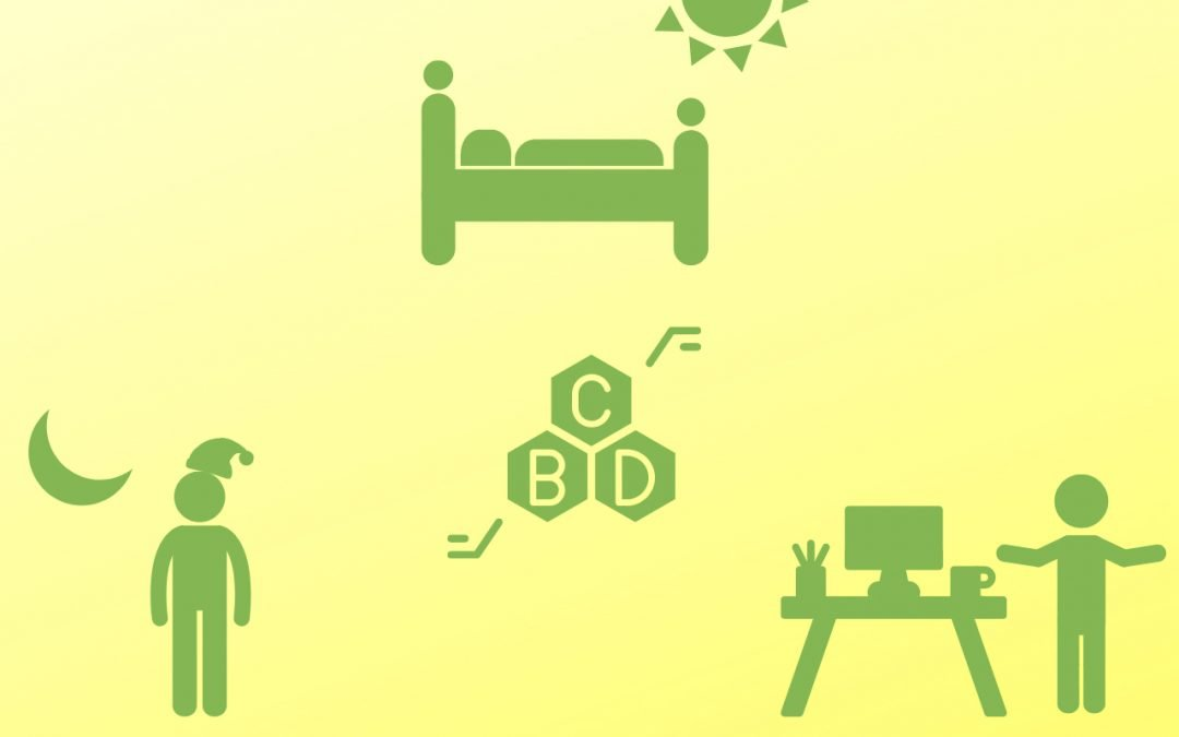 What Is The Best Time of The Day to Use CBD Oil?