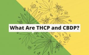 THCp and CBDp graphic