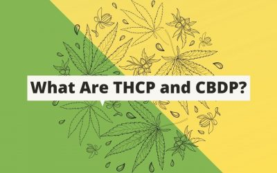 What Are THCp and CBDp?